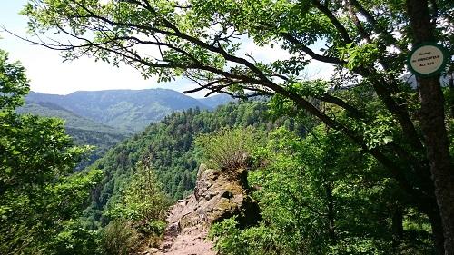 Rocher de Hirschfels nahe Oberhaslach