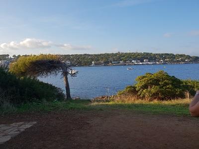 Highlight am Küstenweg Cap Antibes
